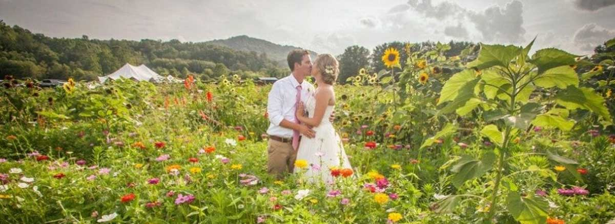 elopement in asheville