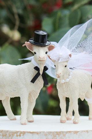 goats at weddings